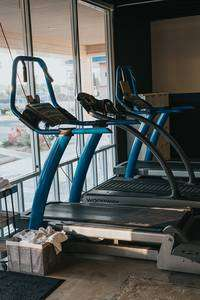 Recommended Treadmills For Home Use- treadmills at a window